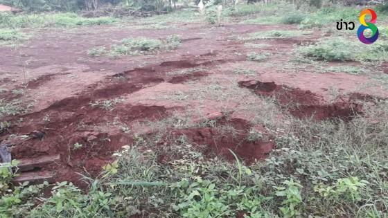ช้างป่าทองผาภูมิออกหากิน-ทำลายพืชไร่หลังที่ว่าการอำเภอ หวั่นเข้าเขตชุมชน