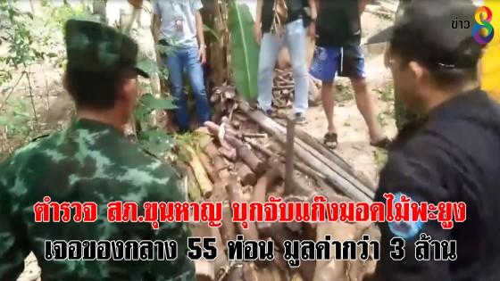 ตำรวจ สภ.ขุนหาญ จ.ศรีสะเกษ สนธิกำลังบุกจับแก๊งมอดไม้พะยูง เจอของกลาง 55 ท่อน มูลค่ากว่า 3 ล้าน