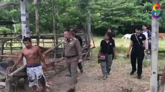 จับหนุ่มวัย 33 ปีเชือดม้าชำแหละเนื้อขาย เข้าข่ายทารุณกรรมสัตว์