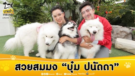 """สวยสมมง """"บุ๋ม ปนัดดา"""" แบ่งโซนบ้านให้หมาอยู่ ในรายการ """"นายจ๋าทาสมาแล้ว"""" วันอาทิตย์ที่ 30 สิงหาคม 2563"""