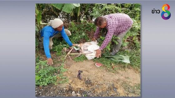 (คลิป) ชาวบ้านช่วยสุนัขถูกจับยัดกระสอบ ทิ้งบึงน้ำในป่าหญ้าข้างทาง
