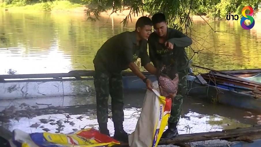 ฝนตกหนักทำปลาปลากระชังที่เลี้ยงในแม่น้ำป่าสักตายเกลื่อน