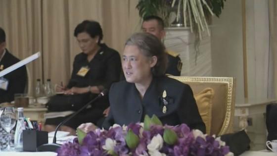 สมเด็จพระเทพฯ เสด็จฯประชุมจัดงานพระราชพิธีถวายพระเพลิงพระบรมศพ