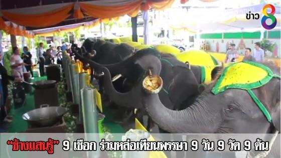 ช้างแสนรู้ 9 เชือก ร่วมหล่อเทียนพรรษา 9 วัน 9 วัด 9 ต้น