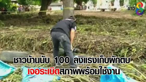 ชาวบ้านนับ 100 ลงแรงเก็บผักตบ เจอระเบิดสภาพพร้อมใช้งาน