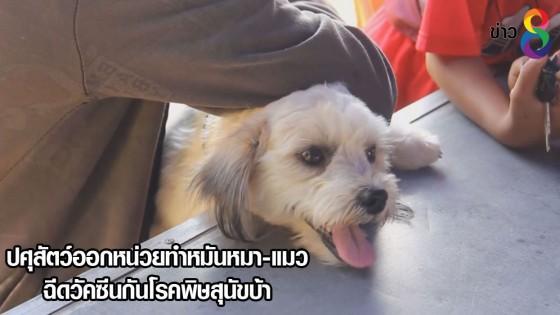 ปศุสัตว์ออกหน่วยทำหมันหมา-แมว ฉีดวัคซีนกันโรคพิษสุนัขบ้า