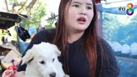 สาวโวยถูกคนใจร้ายวางยาเบื่อหมาเกือบตายยกบ้าน 4 ตัว