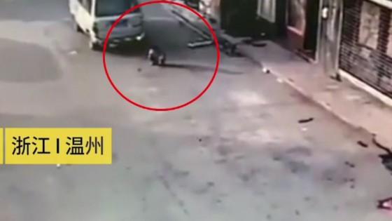 เด็กชายชาวจีนวัย  5 ขวบ รอดปาฏิหาริย์ หลังถูกรถตู้ทับ