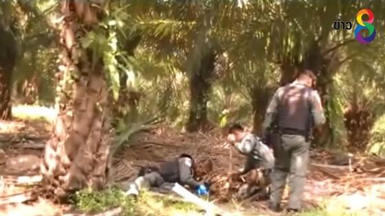 ชาวบ้านผวาพบระเบิดกลางสวนปาล์ม...