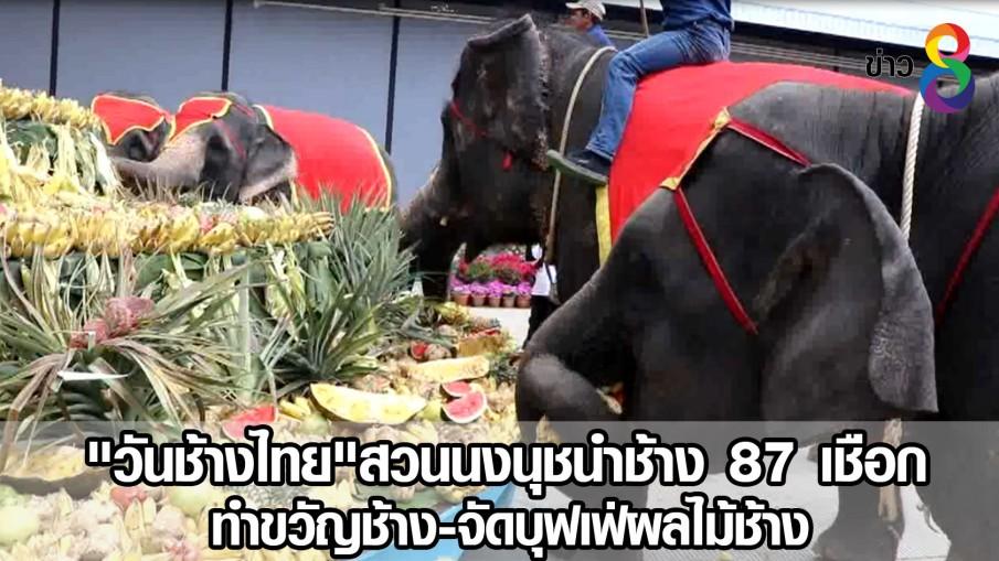 """""""วันช้างไทย""""สวนนงนุชนำช้าง 87 เชือก ทำขวัญช้าง-จัดบุฟเฟ่ผลไม้ช้าง(คลิป)"""