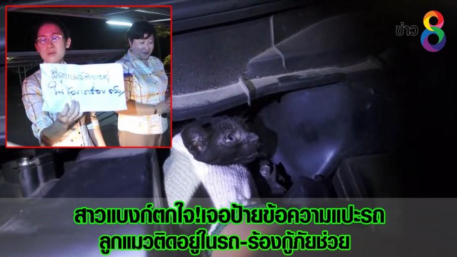 สาวแบงก์ตกใจ!เจอป้ายข้อความแปะรถ ลูกแมวติดอยู่ในรถ-ร้องกู้ภัยช่วย (คลิป)