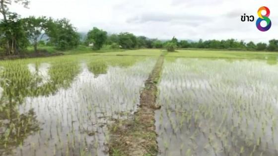 นายกฯขอบคุณ เกษตรกรพื้นที่รับน้ำถ้ำหลวง เสียสละไม่รับเงินช่วยรัฐ...