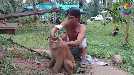 """""""เจ้าไข่น้อย"""" ลิงกังวัย 7..."""