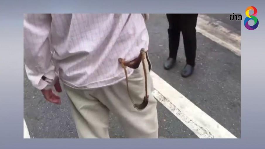 พบตัวแล้วชายใช้หนังสติ๊กยิงลิงเขาสามมุกตาบอด-พิการ