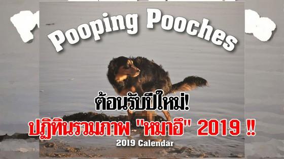 """OMG! ต้อนรับปีใหม่ ปฏิทินรวมภาพ """"หมาอึ"""" 2019"""