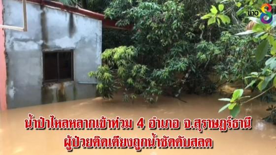 น้ำป่าไหลหลากเข้าท่วม 4 อำเภอ จ.สุราษฎร์ธานี ผู้ป่วยติดเตียงถูกน้ำซัดดับสลด