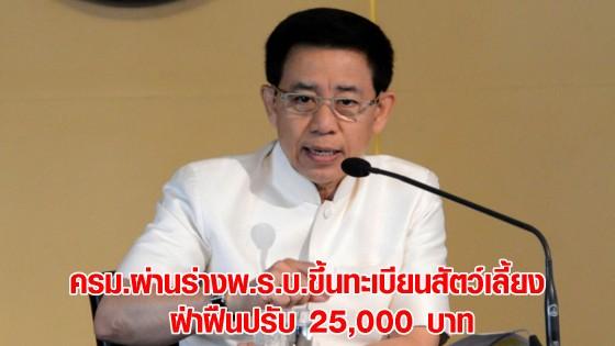 ครม.ผ่านร่างพ.ร.บ.ขึ้นทะเบียนสัตว์เลี้ยง ฝ่าฝืนปรับ 25,000...