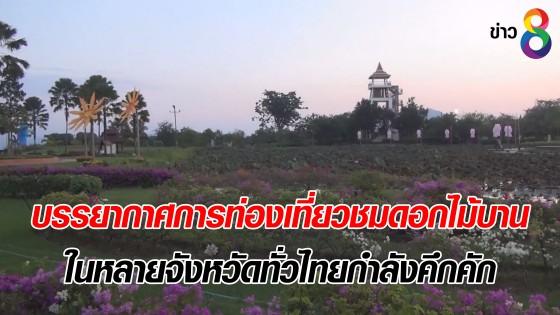 บรรยากาศการท่องเที่ยวชมดอกไม้บาน ในหลายจังหวัดทั่วไทยกำลังคึกคัก
