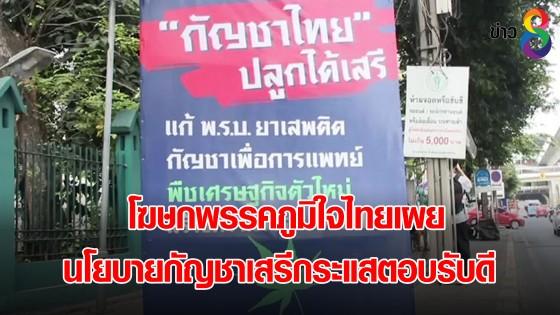 โฆษกพรรคภูมิใจไทยเผย นโยบายกัญชาเสรีกระแสตอบรับดี