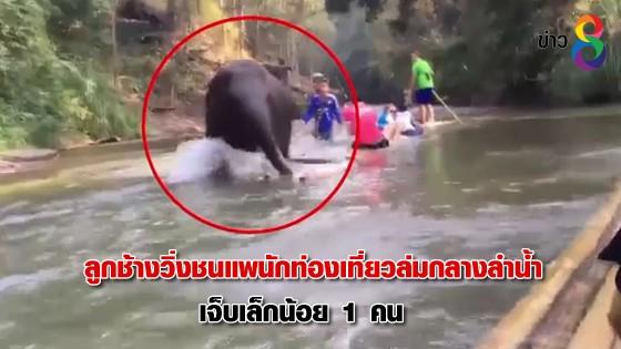 ลูกช้างวิ่งชนแพนักท่องเที่ยวล่มกลางลำน้ำ เจ็บเล็กน้อย 1 คน