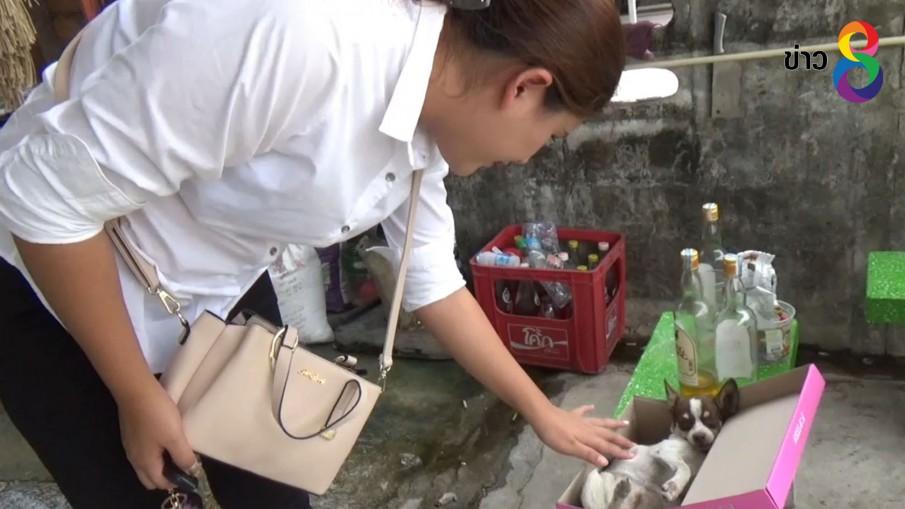 สาวแจ้งความสุนัขแสนรักถูกสุนัขเพื่อนบ้านกัดตาย จ่ายพันเดียว