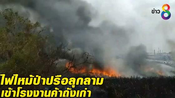 ไฟไหม้ป่าปรือลุกลามเข้าโรงงานค้าถังเก่า...