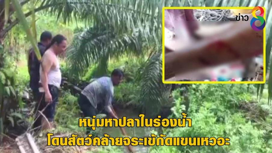 หนุ่มหาปลาในร่องน้ำ โดนสัตว์คล้ายจระเข้กัดแขนเหวอะ
