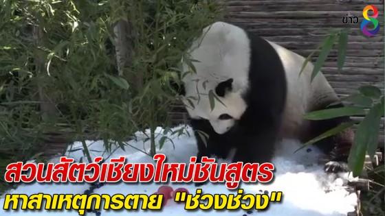 """สวนสัตว์เชียงใหม่ ชันสูตรหาสาเหตุการตาย """"ช่วงช่วง"""""""
