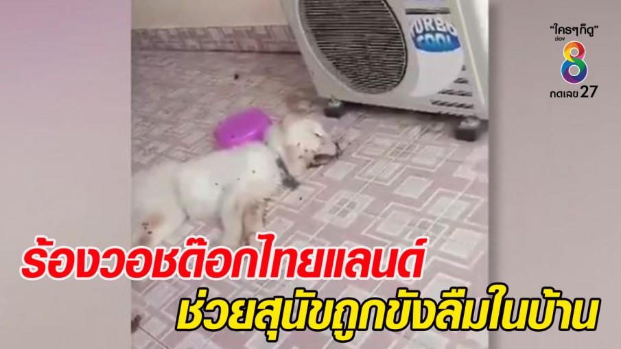 """ชาวบ้านร้อง """"วอชด็อกไทยแลนด์"""" ช่วยสุนัขถูกขังลืมในบ้าน"""