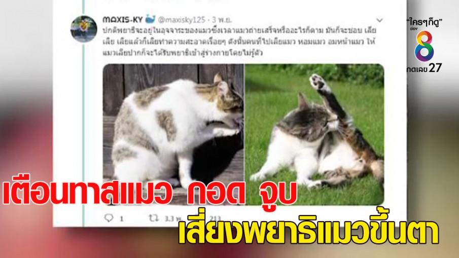 จักษุแพทย์เตือนทาสแมว กอด จูบ แมว เสี่ยงพยาธิแมวขึ้นตา หวิดตาบอด