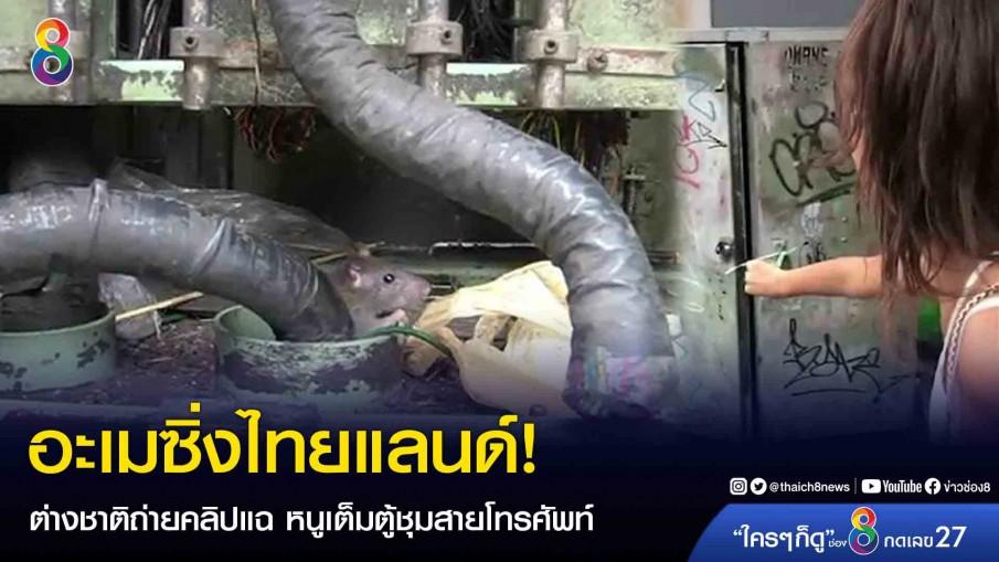 อะเมซิ่งไทยแลนด์! ต่างชาติถ่ายคลิปแฉ หนูเต็มตู้ชุมสายโทรศัพท์