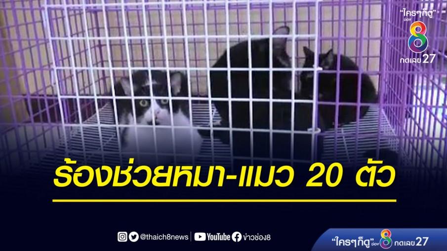 หญิงร้องช่วยหมา-แมว 20 ตัว หลังถูกขับไล่จากแฟลต