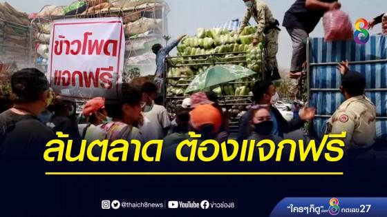 เกษตรกรขนข้าวโพดหวานแจก หลังประสบปัญหาล้นตลาด ราคาตกต่ำ