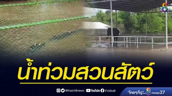 น้ำท่วมสวนสัตว์กาญจนบุรีกว่า 300 ไร่ เร่งอพยพสัตว์...