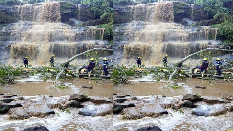 ระทึก! ต้นไม้ใหญ่โค่นทับใส่ผู้คนขณะเล่นน้ำตก ในประเทศกานา ดับอย่างน้อย18 คน